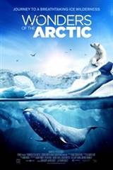 Wonders of the Arctic Poster