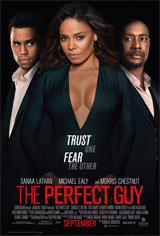 The Perfect Guy Movie Poster Movie Poster