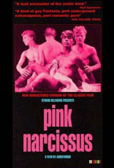 Pink Narcissus Movie Poster