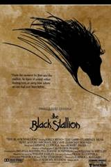 The Black Stallion Movie Poster