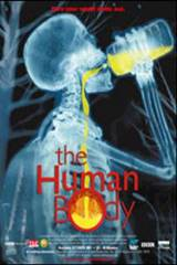 The Human Body Movie Poster