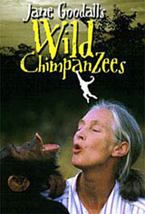 Jane Goodall's Wild Chimpanzees Movie Poster