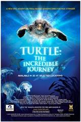 Turtle: The Incredible Journey Movie Poster